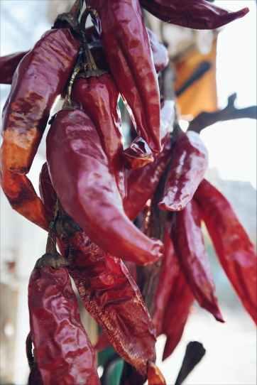 Photo by Brigitte Tohm on Pexels.com